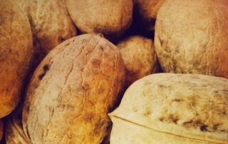kwaliteitsmanagement op alle niveaus: harde noten om te kraken bij de RvA | Allios Deite